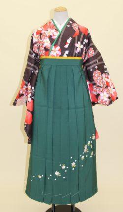 小振袖・袴フルセット「黒地にオシャレな桜花」