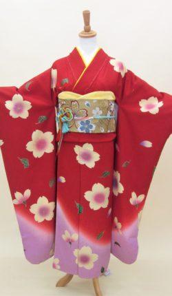 成人式 正絹振袖フルセット「赤地に柔らか舞桜 振袖」