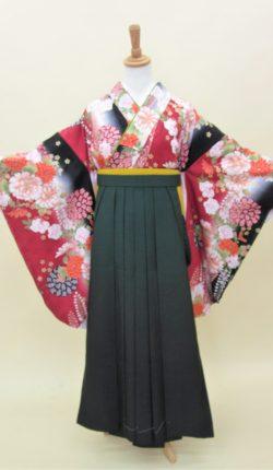小振袖・袴フルセット「赤地にオシャレな花古典」