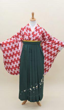 小振袖・袴フルセット「赤地にオシャレ矢絣」