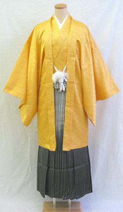 成人式 男物羽織袴フルセット「黄色羽織グラデーション袴」