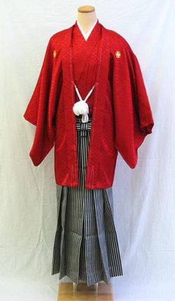 成人式 男物羽織袴フルセット「真紅の羽織袴」