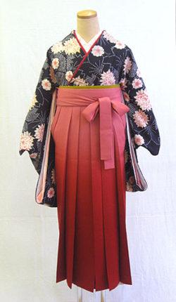 小振袖・袴フルセット「黒地にオシャレな染絞り」