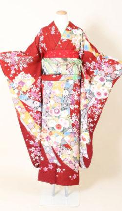 成人式 正絹振袖フルセット「赤地に花熨斗古典柄 振袖」